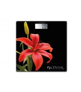Напльные весы Centek CT-2416